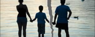 Atualização Jurídica - Direito de Família - Alienação Parental, Guarda Compartil