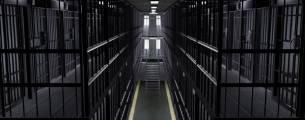 Atualização Jurídica - Processo penal - Audiência de Custódia - Gratuito