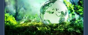 Casos de Sucesso na Educação Ambiental