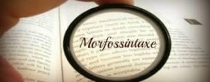 Disciplinas para Concursos: Língua Portuguesa - Morfossintaxe