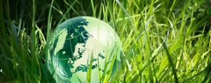 Educação Ambiental - Preservação e Recuperação de Áreas Degradadas