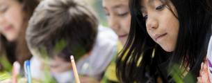 Educação Ambiental como Instrumento de Sustentabilidade