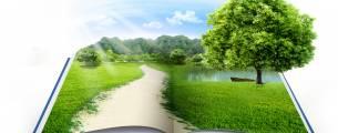 Estudo de Projetos Modelo em Sustentabilidade e Educação Ambiental - Gratuito