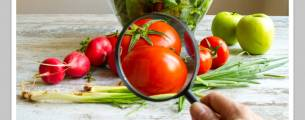 Fornecimento de Alimentos Seguros - Gratuito