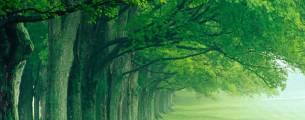 Metodologias Aplicadas à Educação Ambiental – Módulo I - Gratuito