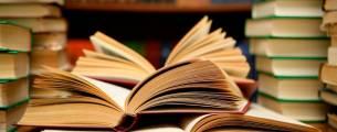 Teoria da Literatura I - Gratuito