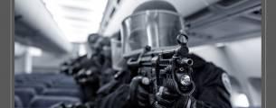 Violência no Brasil e Políticas de Segurança Pública - Gratuito