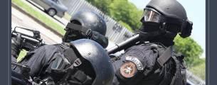 Violência Policial, Uso da Força e Segurança Pública - Gratuito
