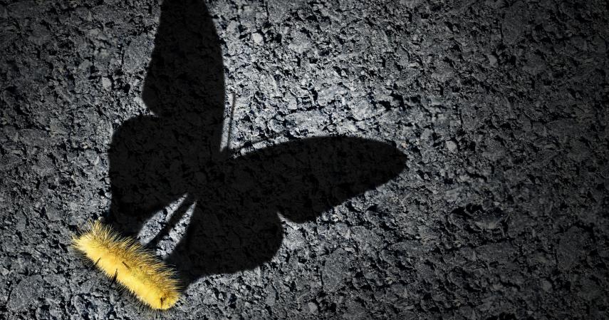 O Desafio de Mudar: Como Contornar Resistências à Mudança
